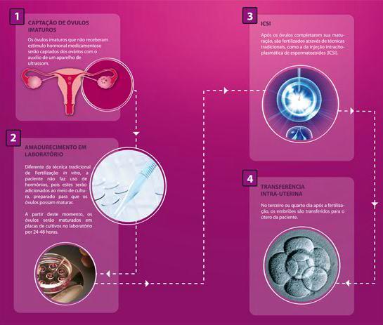 matura ovulo fora do corpo
